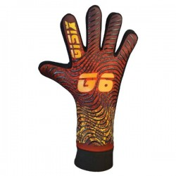 G6 G076 1