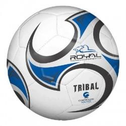 Royal Tribal indendørsfodbold