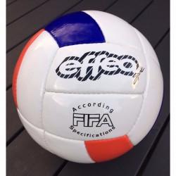 Zeus EFFEA Volleyball