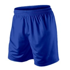 Royal Avia shorts
